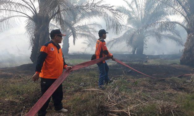 BPBD Provinsi Turunkan Tim & Tangki Air Padamkan Karhutla Benteng